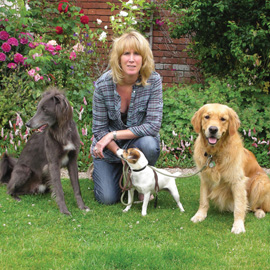 dog training Exeter